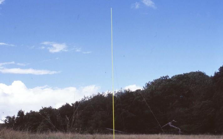 big stick 001
